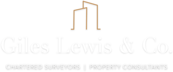Chartered surveyor Salisbury